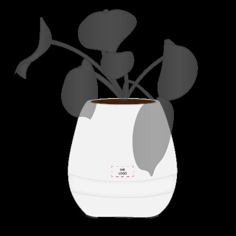 Singing Pot